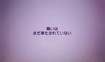 DSC07267.JPG